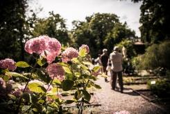 "Milan ""Cortili Aperti"" - discovering private courtyards in Brera, Milan, Botanical Garden Brera"